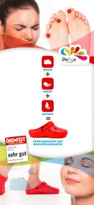 Mini DUX Faltblatt DIN lang (6-Seiter) Set zu 25 Stück